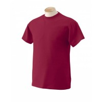 Adult 5 oz. HD Cotton™ T-Shirt